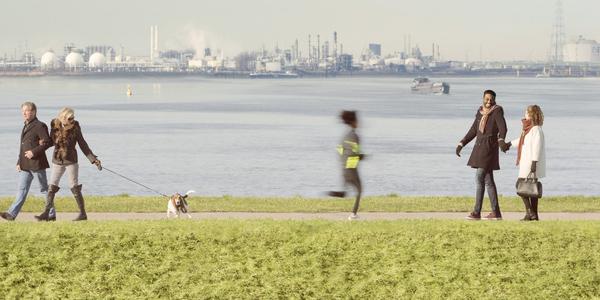 de haven als achtergrond bij de Schelde
