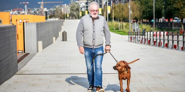 Oudere man wandelt man door stadscentrum Antwerpen met zijn hond